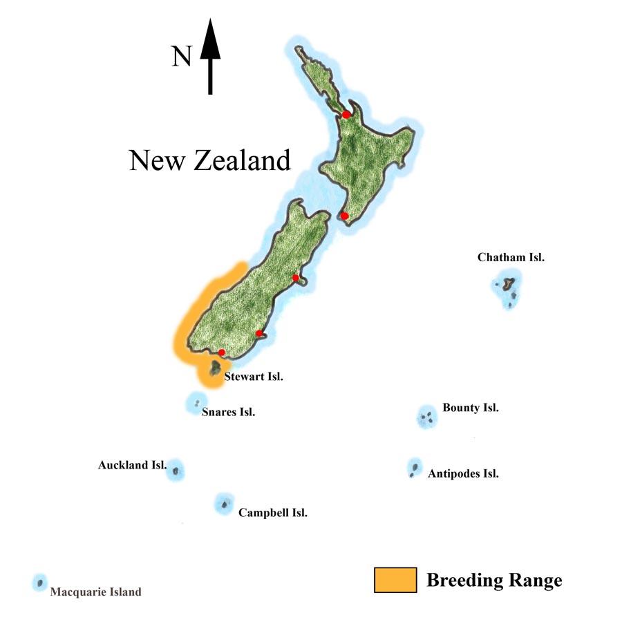 Penguin habitat map - photo#27