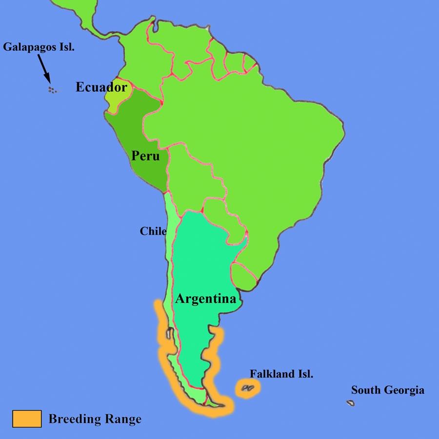 Penguin habitat map - photo#8