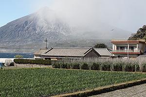 Agricultural land near Sakurajima volcano, volcanic ash